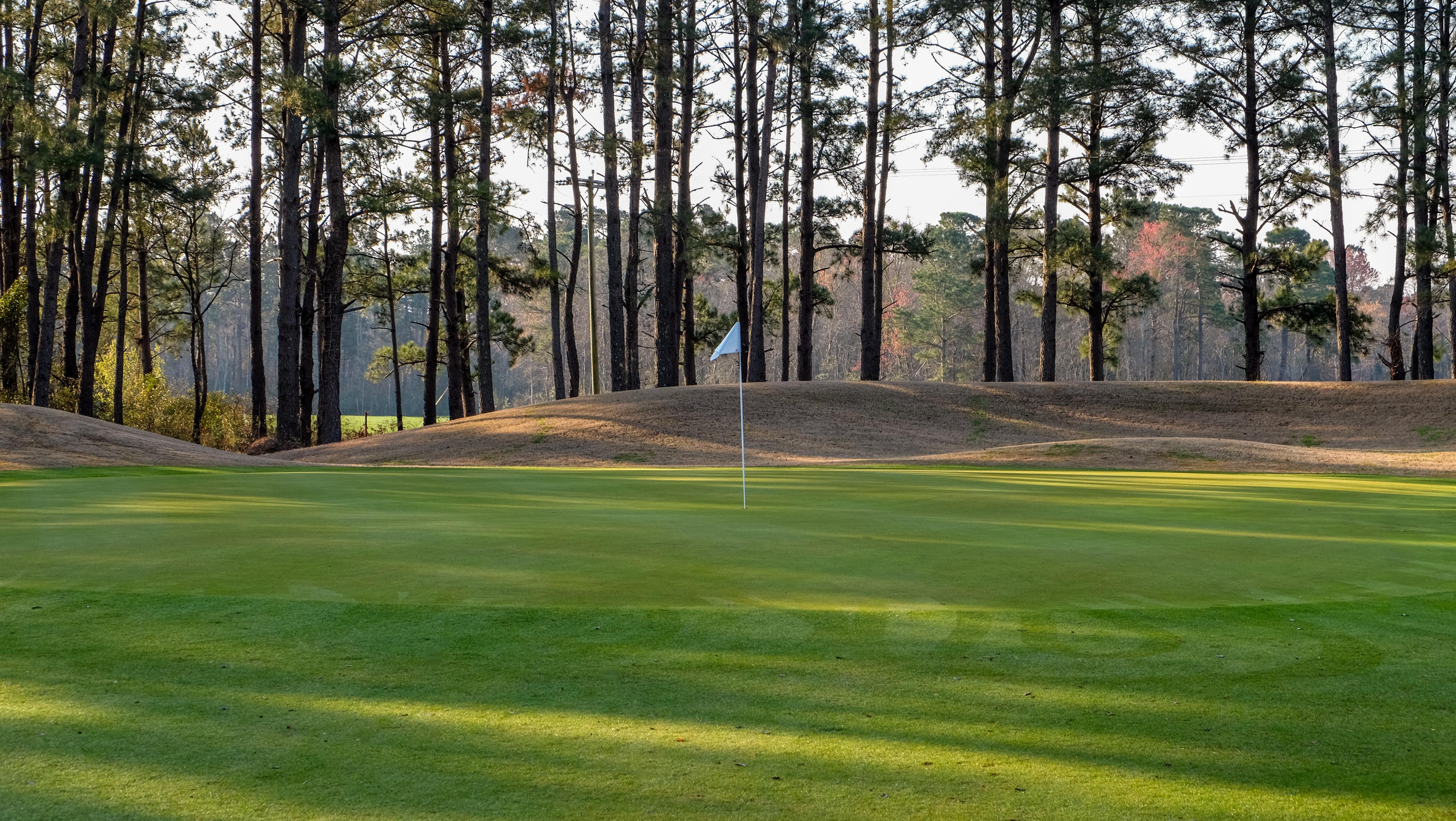 Diamondback Golf Club 1